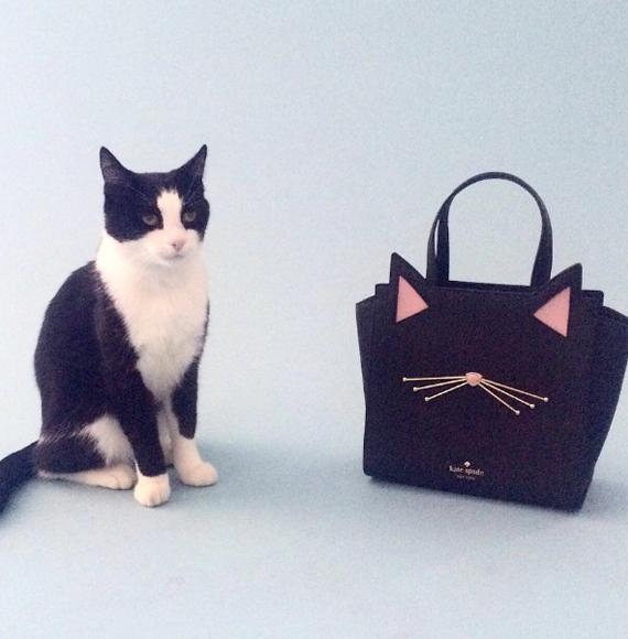 Kate Spade new york女式猫咪手提斜挎包